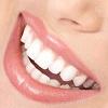 skolko-zubov-u-cheloveka